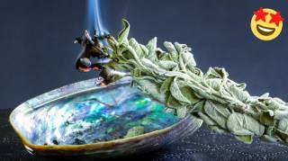Faire Brûler de la Sauge : 11 Bienfaits Incroyables Pour la Santé