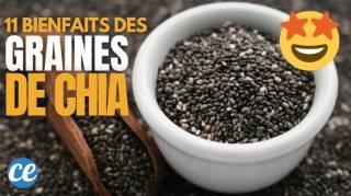 Graines de Chia : 11 Bienfaits Santé Prouvés Scientifiquement