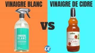 Voici La Vraie Différence Entre le Vinaigre Blanc Et le Vinaigre de Cidre