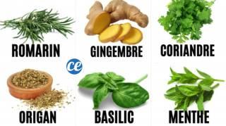 10 Plantes Aromatiques Qui Soignent Vraiment (et Comment les Utiliser)