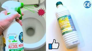 Comment Désinfecter & Désodoriser Vos Toilettes SANS Utiliser de Javel