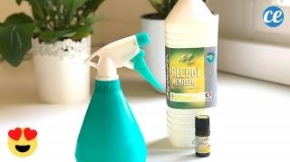 Une Maison Qui Sent Toujours Bon Avec Ce Spray Désodorisant DIY