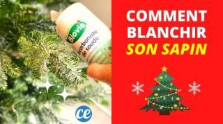 Comment Blanchir Son Sapin de Noël Facilement avec du Bicarbonate