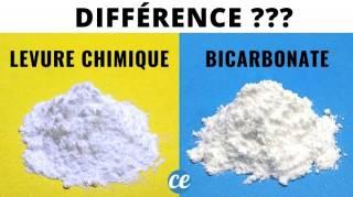 Quelle Est la Différence Entre le Bicarbonate de Soude Et la Levure Chimique