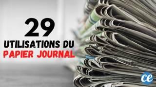 29 Utilisations Étonnantes du Papier Journal Ne Ratez Pas la N°23