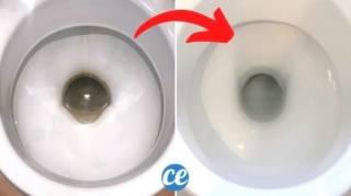 Comment Nettoyer le Fond des WC Avec du Coca-Cola (SANS Frotter)