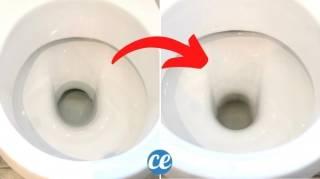 Comment Vider la Cuvette des Toilettes (Et Ainsi la Nettoyer Facilement)