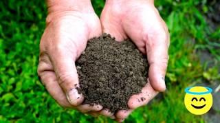 Pourquoi Toucher la Terre Aurait un Effet ANTI-DÉPRESSEUR