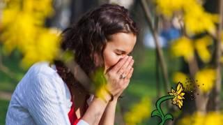 Rhume des Foins : Le Remède de Grand-Mère Naturel et Efficace
