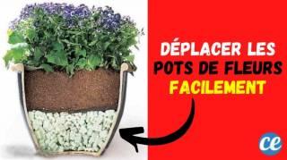 L'Astuce de Jardinier Pour Déplacer des Pots de Fleurs TROP Lourds