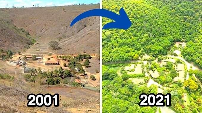 Ce Couple a Planté 2 Millions d'Arbres en 20 ans Pour Reboiser une Forêt (Et Même les Animaux Sont Revenus).