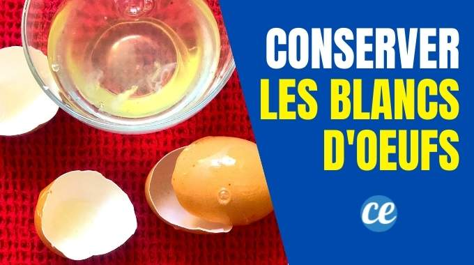 Conservation des Blancs d'Oeufs : Mon Astuce Anti-Gaspi Pour les Conserver.