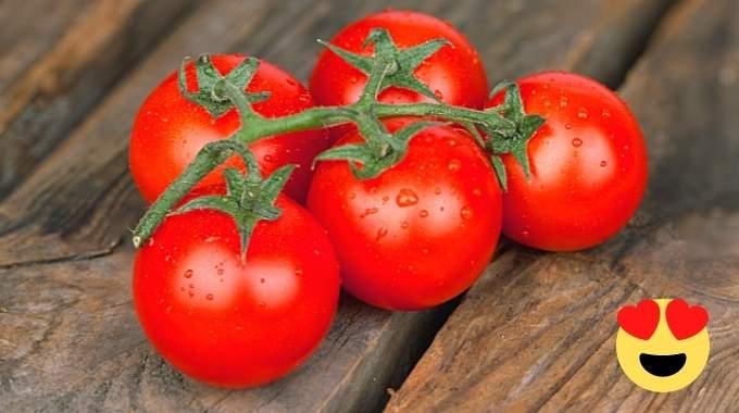 L'Astuce Pour Conserver Ses Tomates 2 Fois Plus Longtemps.