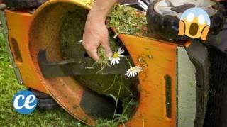 L'Astuce Efficace Pour Nettoyer une Tondeuse Pleine d'herbe