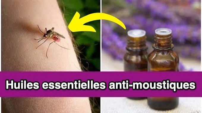 7 Huiles Essentielles Anti-Moustiques à Mettre d'Urgence dans Votre Diffuseur.