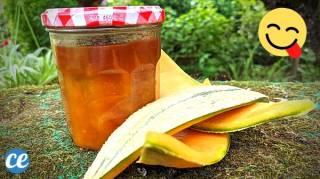 Confiture d'Écorce de Melon : La Délicieuse Recette Anti-Gaspi