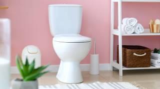 Nettoyage des Toilettes : 6 Astuces Naturelles Pour Retrouver des WC Nickel