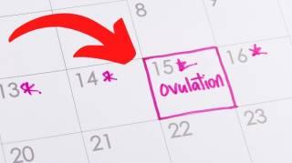 Comment Savoir Si On Est en Période d'Ovulation  6 Signes Qui ne Trompent Pas