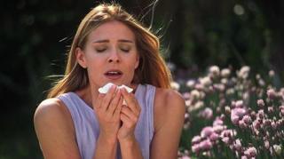allergies pollen geste