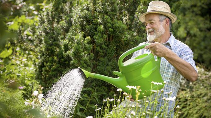 l 39 astuce pour arroser vos plantes en douceur avec un tuyau d 39 arrosage. Black Bedroom Furniture Sets. Home Design Ideas