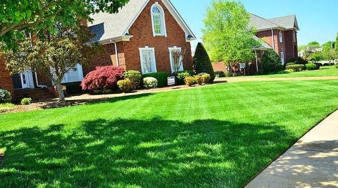 l 39 astuce surprenante pour avoir une pelouse bien verte. Black Bedroom Furniture Sets. Home Design Ideas