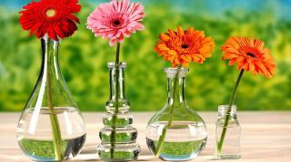 astuce pour nettoyer fond vase etroit