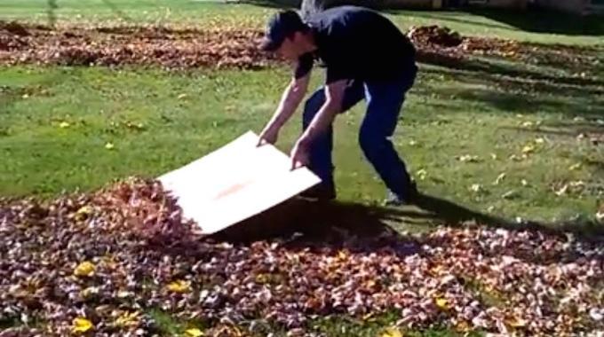 l 39 astuce g niale pour ramasser rapidement les feuilles dans le jardin. Black Bedroom Furniture Sets. Home Design Ideas