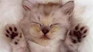 astuces-bien-dormir