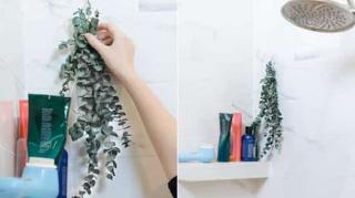 astuces naturelles parfumer maison faciles