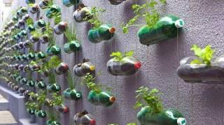 bouteilles plastique recyclees jardin
