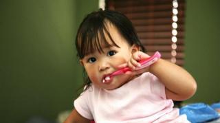 brosser-dents-carrousel