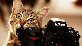 cache-appareil-photo