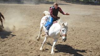 cheval emballé galop comment tenir