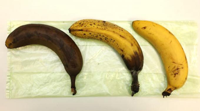 Conservation des bananes comment les conserver plus longtemps - Comment conserver le radis noir ...