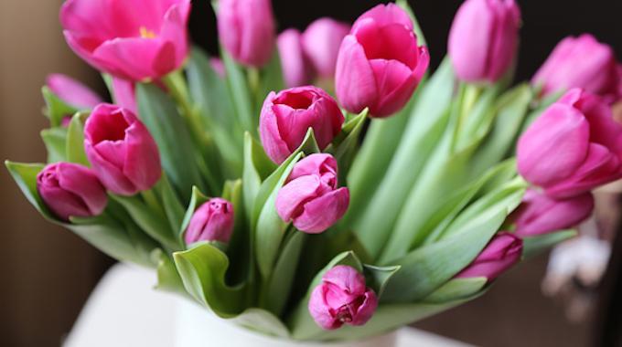2 astuces pour conserver un bouquet de fleurs plus longtemps.