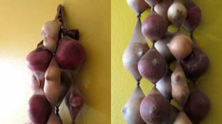 Comment conserver oignons pendant des mois