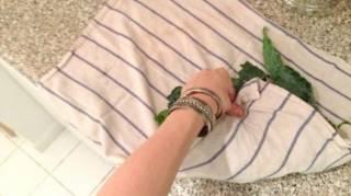 comment-conserver-salade-dans-torchon