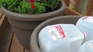 comment économiser terreau pot fleurs