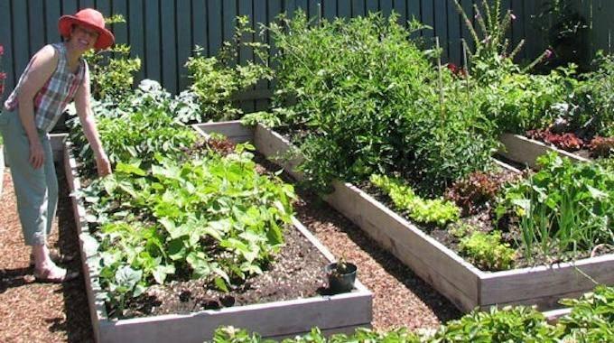 Les 5 secrets du jardinage sans effort - Comment faire un beau jardin potager ...