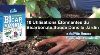 comment-utiliser-bicarbonate-soude-potager
