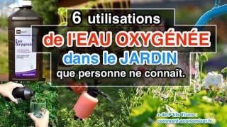 comment utiliser eau oxygénée jardin