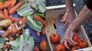 compost-faire-engrais-naturel