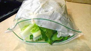 conservation salade verte frigo
