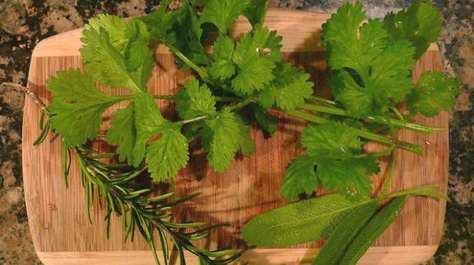 Conservation des Herbes Fraîches : Une Astuce Infaillible.