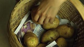 conserver-patate