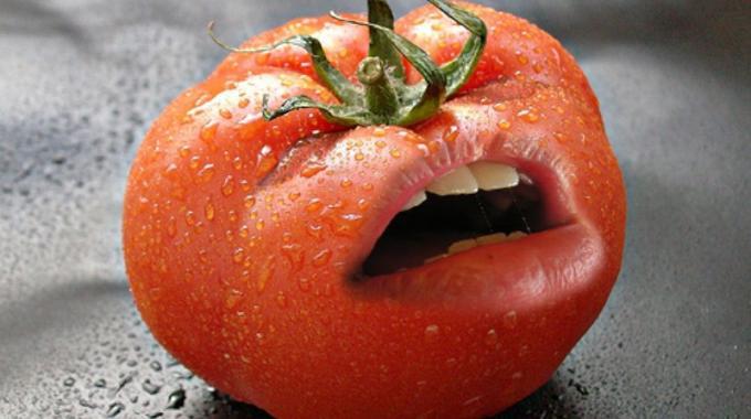 La seule et unique fa on de bien conserver ses tomates - Comment faire grossir les tomates ...