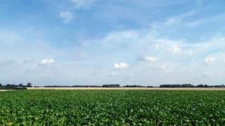 danemark-premier-pays-agriculture-bio-europeen