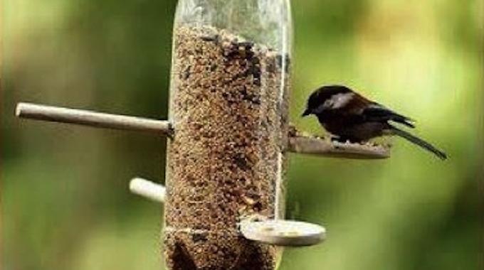 Comment Créer Facilement un Distributeur Automatique de Nourriture Pour Oiseaux.