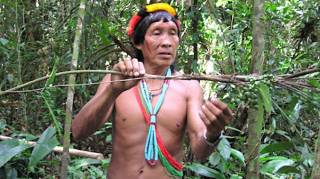 encyclopedie-medecine-traditionnelle-tribu-amazonie