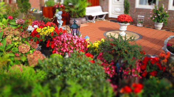 6 engrais naturels que vos plantes vont adorer. Black Bedroom Furniture Sets. Home Design Ideas